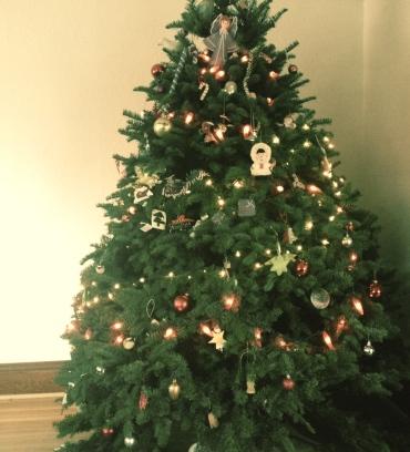 Christmas tree in corner